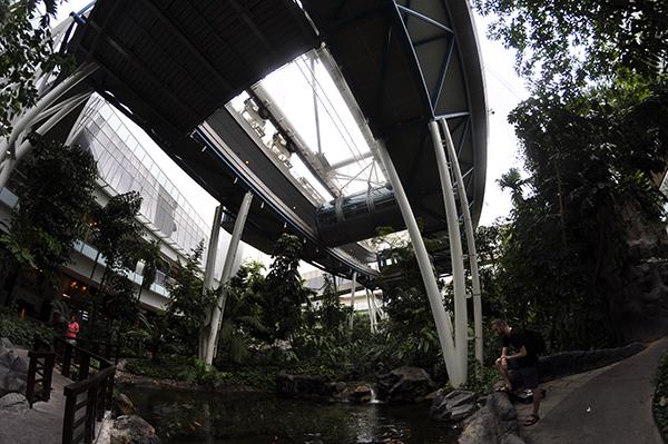 singapore0260