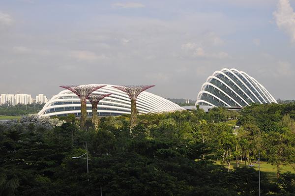 singapore0493