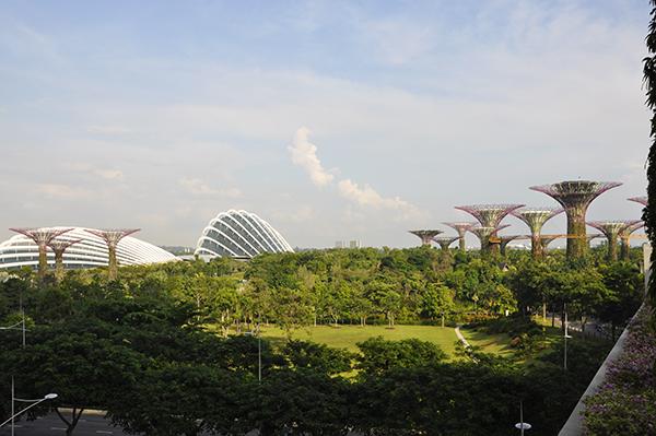 singapore0496