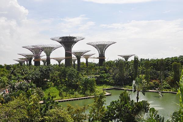 singapore0793