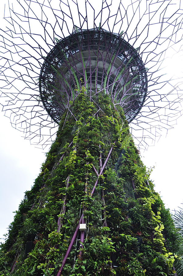 singapore0830