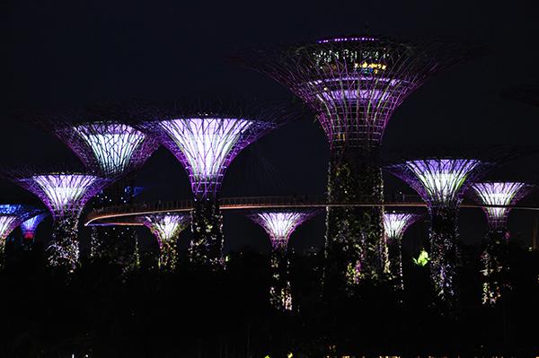 singapore1101